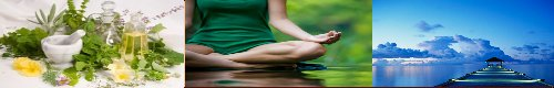 A Quantum Path to Wellness